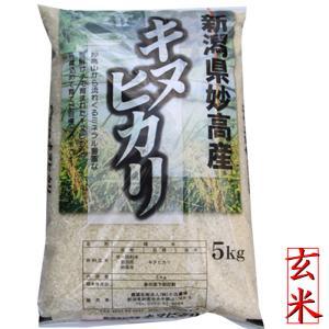 玄米 玄米5kg 2018 新潟県産 玄米 キヌヒカリ5kg キヌヒカリ玄米 30年産 お買い得|kosihikari