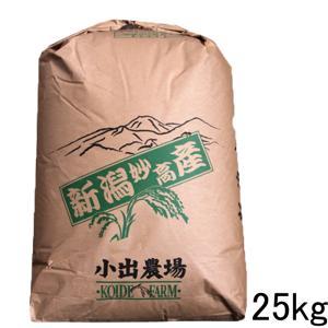 「送料無料」 新潟産コシヒカリ 25kg(25kg×1袋) ...