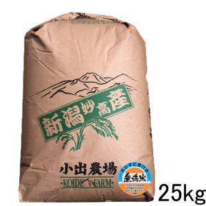 送料無料 新米 無洗米 新潟産コシヒカリ25kg 無洗米25kg 令和元年 新潟県産こしひかり 無洗米25キロ 農家直送 厳選米|kosihikari