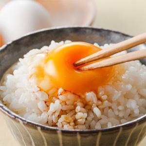 新米【無洗米】新潟県産 無洗米10kg  5kg×2袋 新米10kg  お米 つきあかり10キロ 令和2年産 2020 美味しいお米|kosihikari|05