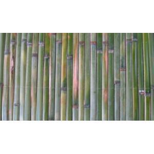 【垣根】簡単竹垣 L1.8m×W1.8m(B級)