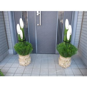 開運門松 天然の国産真竹 正月飾り 迎春 90cm 1対|kosikawa-tikuzai