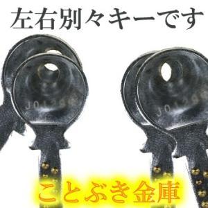送料無料 DWP30-1 ダイヤセーフ カギ式小型耐火金庫  新品 家庭用耐火金庫 カギを差し込み回すだけの簡単な操作[代引き不可]|kotobukikinko|03