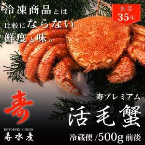 北海道産 カニ 高級毛蟹を自宅で堪能!料亭ご用達の寿 活毛ガニ (500g) ギフト 冷蔵 贈答 かに 活き