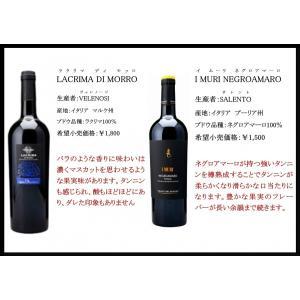 イタリア【赤】ワインセット 6本 フルボディ 濃厚ワインセット|kotobukiyasake