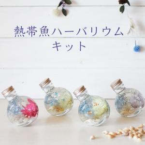 ハーバリウム キット 花材+瓶+オイル 熱帯魚 あじさい かすみ草 シルバーデージー プリザーブドフラワーキット|kotohana