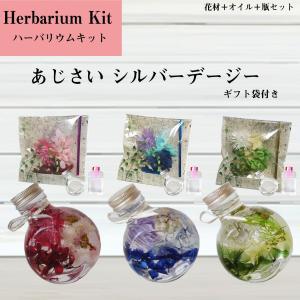ハーバリウム キット 花材+ボトル+オイル  あじさい シルバーデージー 袋付き プリザーブドフラワーキット hs107|kotohana