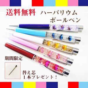 ペンの先を回すとペン先が出てきます。 (※名入れの入ってない商品です。名入れの商品は別途販売していま...