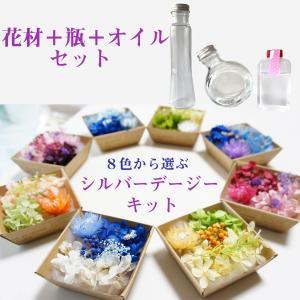 ハーバリウム シルバーデージー の花材+瓶+オイルのセットを販売しています。 ボトル1本分の花材です...