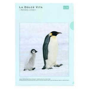A4クリアファイル ストロールペンギン(フォトシリーズ21)|kotoricafe
