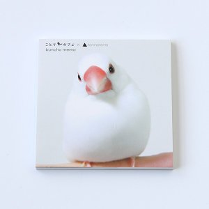 【torinotorio×ことりカフェ】torinotorio 文鳥メモ帳|kotoricafe