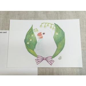 【文鳥院まめぞう】ポストカード『涼しき音色』|kotoricafe