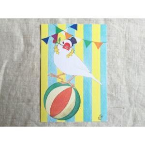 【文鳥院まめぞう】ポストカード『たまのりゆらゆら』|kotoricafe