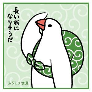 在庫限り★【ふろしき文鳥】ミニタオル(ハンドタオル) 【シープロップ】|kotoricafe