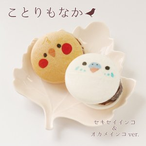 【ことりカフェ】ことりもなか セキセイ&オカメver.