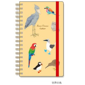 【Beaux Oiseaux/オリエンタルベリー】ダブルリングノート ★世界の鳥 kotoricafe