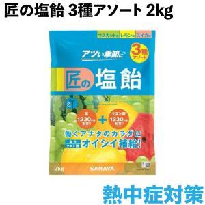 サラヤ ゲインズ匠の塩飴アソート 2kg マスカット・レモン・スイカ 27861