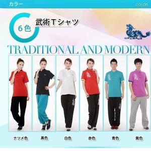 (太極拳)カッコイイ中国武術デザインTシャツ!練習には武術らしい動きやすいTシャツが一番!武術太極拳練習Tシャツ  武術Tシャツ|kougabunkaten