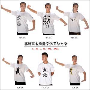 (太極拳)カッコイイ中国武術デザインTシャツ!練習には武術らしい動きやすいTシャツが一番!太極拳論文化Tシャツ 武縁堂太極拳文化Tシャツ|kougabunkaten