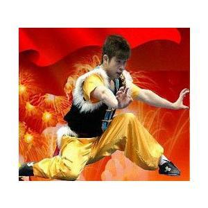 南拳 / 南拳服 / 南拳表演服 / カンフー服 / 武術服 / 演舞服 / 武術 / カンフー / 拳法 南拳服・南拳表演服・刺繍南拳服・デザイン三セット南拳服|kougabunkaten