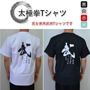 太極拳 カンフー【武術Tシャツ・半袖】〜武〜