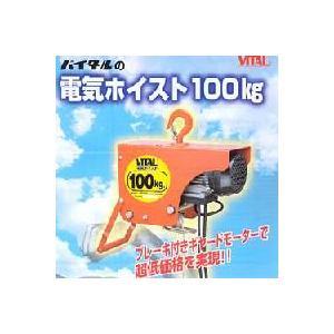 バイタル 電気ホイストVE100 100kg|kouguya