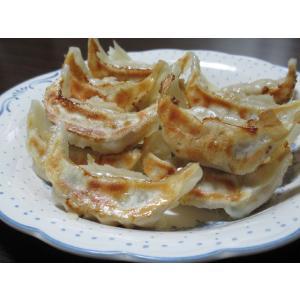 喜多方もっちり餃子(21gx100) 喜多方ラーメン店でも人気|kouhakugyoza