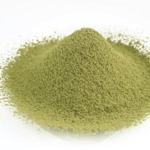 青汁 モロヘイヤ パウダー 500g 粉末 100% サプリメント お茶 koujien
