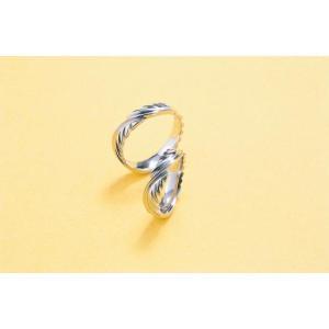 プラチナ結婚指輪(鍛造&彫金)光沢 Eagle Feather イーグルの羽&翼 インディアン kouki 02