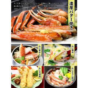 (かに カニ 蟹)  カット生ずわい蟹 750g (総重量1kg) 生食もOK! 約2〜3人前 \まもなく終了!年末早割⇒1,401円割引!/ |かに|かにしゃぶ|お刺身|kouragumi|03