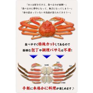(かに カニ 蟹)  カット生ずわい蟹 750g (総重量1kg) 生食もOK! 約2〜3人前 \まもなく終了!年末早割⇒1,401円割引!/ |かに|かにしゃぶ|お刺身|kouragumi|04