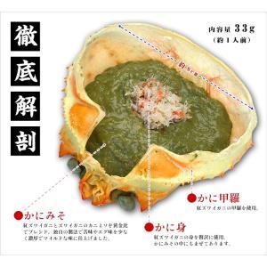 かにみそ カニミソ 蟹身入り 甲羅盛り 6個入り|kouragumi|03
