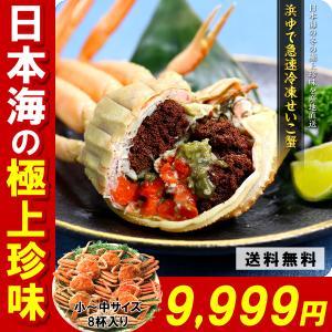 セイコガニ 「急速冷凍」越前/松葉せいこ蟹(小〜中サイズ×8尾入り/約3人前)