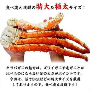 (かに カニ 蟹)  食べ応え抜群の特大&極太たらばがに足1kg(解凍後800g前後)×1肩 シュリンク包装|kouragumi|02