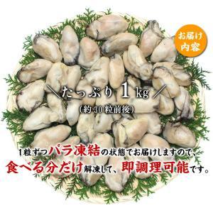 \3,240円→1,999円/ (カキ 牡蠣)...の詳細画像1