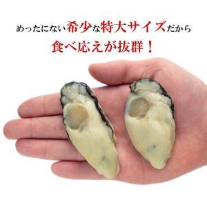\3,240円→1,999円/ (カキ 牡蠣)...の詳細画像3