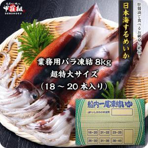 【他商品と同梱不可】石川県小木港の一級品!船凍するめいか業務用8kg(31〜35本入り)1本240g前後※バラツキあり【マイカ】【真いか】【真イカ】【刺身】|kouragumi