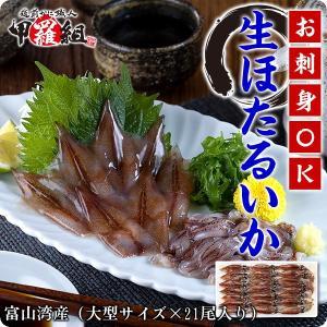 日本海富山湾の一級品!お刺身用ほたるいか大サイズ×21尾入り【ほたるいか】【ホタルイカ】【蛍烏賊】|kouragumi