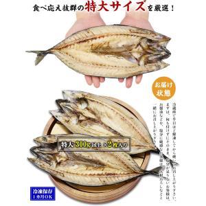 (干物) 肉厚とろサバ開き×3枚入   鯖・さば・サバ・一夜干し  kouragumi 02