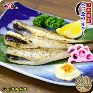 氷下魚(こまい)の一夜干し1kg(20尾前後)【氷下魚】【こまい】【コマイ】【一夜干し】|kouragumi