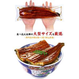 鹿児島県産 特大うなぎ蒲焼き 200g前後×1尾 (有頭/背開き真空包装)|kouragumi|02