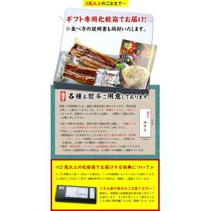鹿児島県産 特大うなぎ蒲焼き 200g前後×1尾 (有頭/背開き真空包装)|kouragumi|03