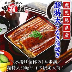超特大300g国産うなぎ蒲焼き1本 送料無料2,999円!2...