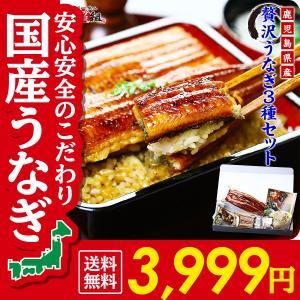値上がり前に!(御中元 ギフト) 鹿児島県産 贅沢うなぎ3種...