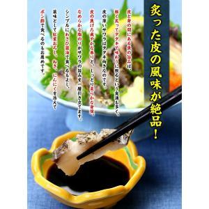 炙った皮の風味が絶品!日本海の高級魚サワラたたき半身フィーレ約350g(3〜4人前)【さわら】【サワラ】【鰆】|kouragumi|02