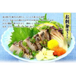 炙った皮の風味が絶品!日本海の高級魚サワラたたき半身フィーレ約350g(3〜4人前)【さわら】【サワラ】【鰆】|kouragumi|04