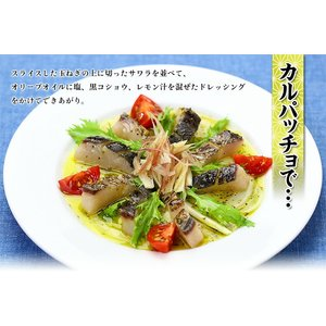 炙った皮の風味が絶品!日本海の高級魚サワラたたき半身フィーレ約350g(3〜4人前)【さわら】【サワラ】【鰆】|kouragumi|05
