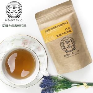 国産の紅茶 夏摘み在来 和紅茶 (2袋セット)熊本産 お茶のカジハラ 送料無料 kousa-youmanzyou