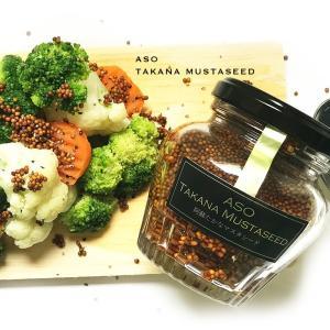 熊本 阿蘇たかなマスタシード 熊本産 阿蘇たかな 菊池食品 阿蘇名物 kousa-youmanzyou