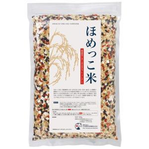 日本豊受自然農 ほめっこ米 500g|kousuiclub